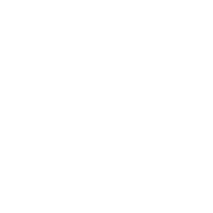 Florida African American Heritage Preservation Network | logo